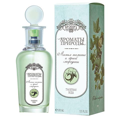 aromaty_prirody_list_ya_tomata_i_chernaya_smorodina.jpeg